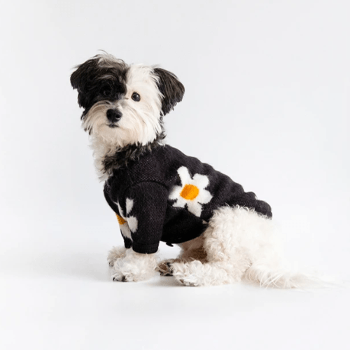 Daisy Cardigan Black - Sir Dogwood