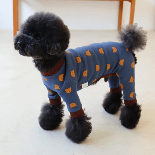 Teddy Bear Onesie Blue - Sir Dogwood