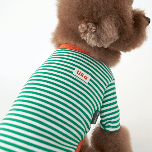 Striped Rica Tee Green - Sir Dogwood