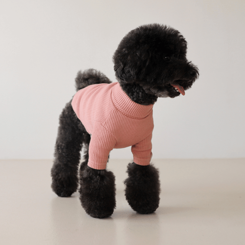 Basic Turtleneck Pink - Sir Dogwood