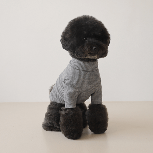 Basic Turtleneck Grey - Sir Dogwood