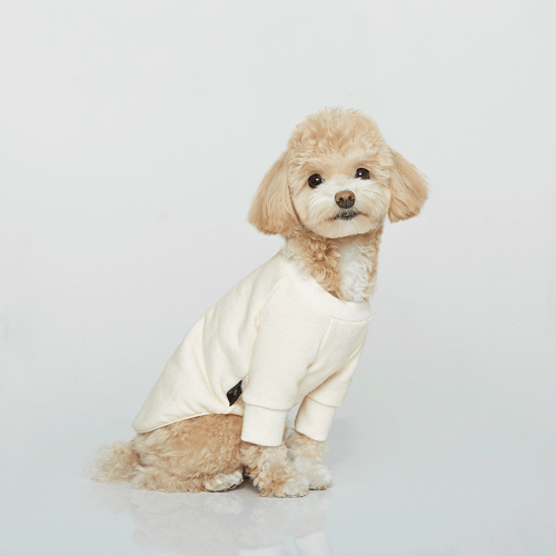 Vintage Sweatshirt Ivory - Sir Dogwood