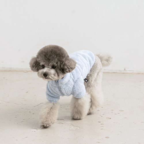 Fleece Zip-Up Jacket Blue - Sir Dogwood
