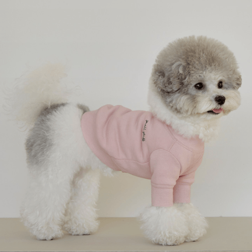 Crewneck Sweatshirt Pink - Sir Dogwood