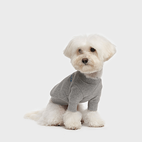 Crewneck Sweatshirt Grey - Sir Dogwood