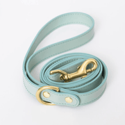 PRE-ORDER: Leather Leash Mint - Sir Dogwood