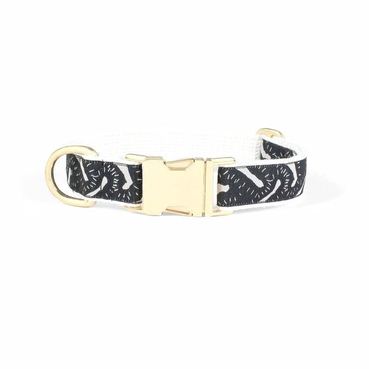 Life of the Party Collar Black - Sir Dogwood