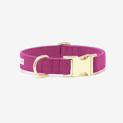 The Scot Collar Magenta - Sir Dogwood