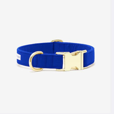 The Scot Collar Royal Blue - Sir Dogwood
