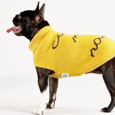 Call My Name Sweater - Sir Dogwood
