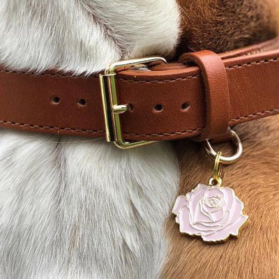 Rose Collar Charm - Sir Dogwood