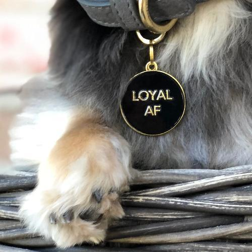 Loyal AF Collar Charm Black
