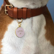 Loyal AF Collar Charm Pink - Sir Dogwood