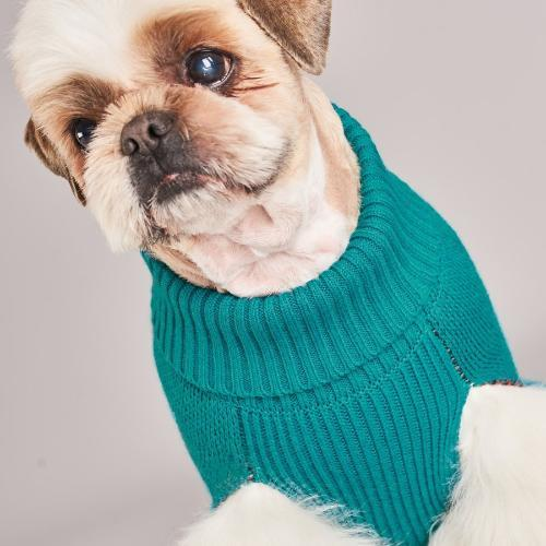 Shark Attack Sweater Teal - Sir Dogwood