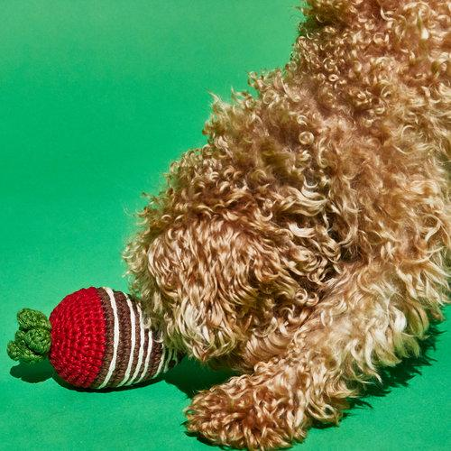 Crochet Chocolate Covered Strawberry Toy - Sir Dogwood