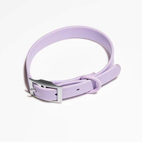 Modern Dog Collar Lilac - Sir Dogwood