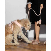 Poop Bag Holder Blush - Sir Dogwood