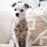 Matching Wild One Crewneck For Dogs - Sir Dogwood