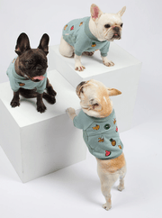Tutti Fruitti Sweater - Sir Dogwood
