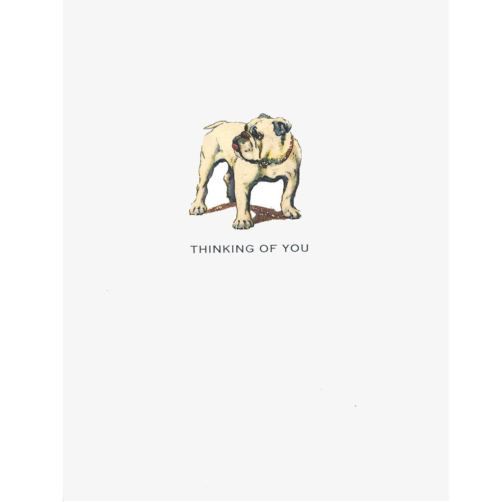 Bulldog greeting card Lumia Designs