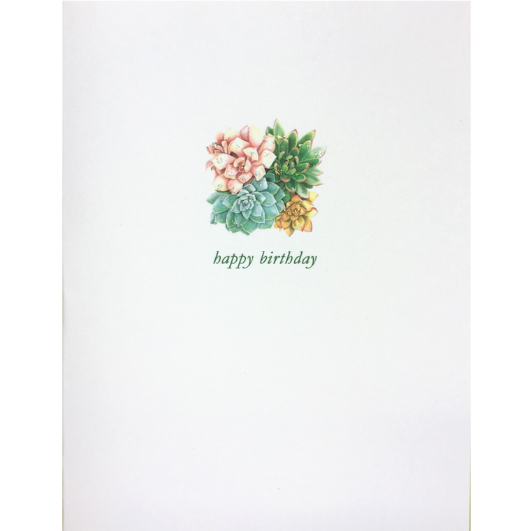 Succulant Birthday