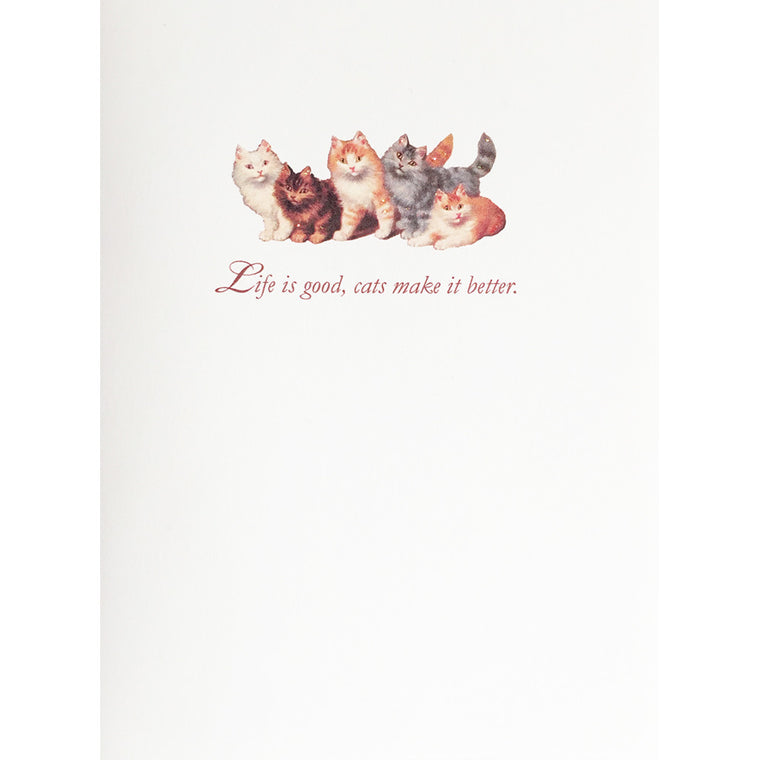 Greeting Card Cats Make it Better - Lumia Designs