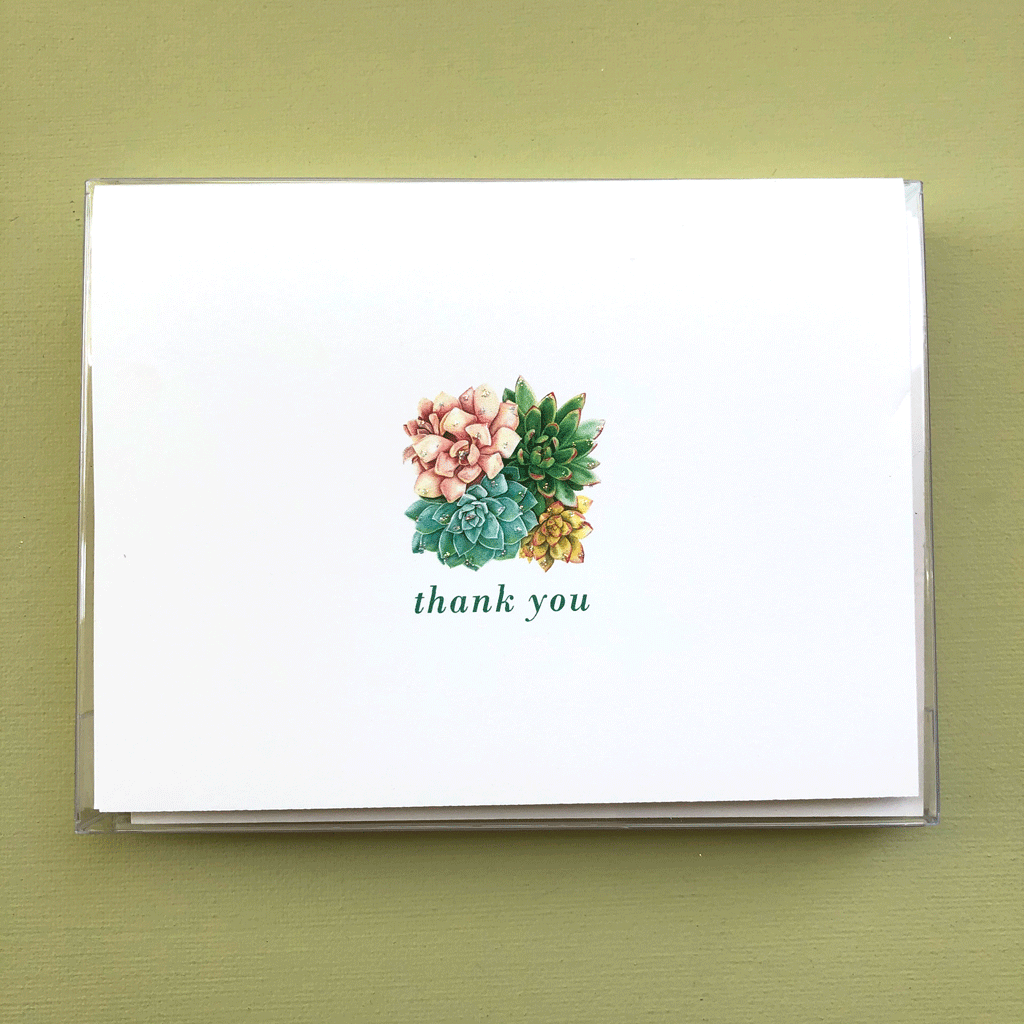 Succulent Thank You Boxed Note Cards