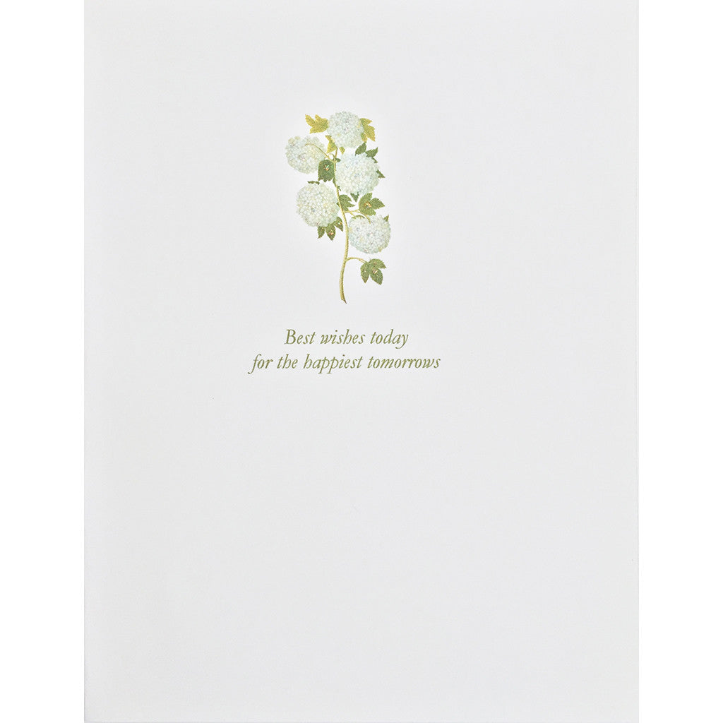 Greeting Card Whie Hydrangea - Lumia Designs