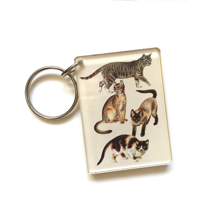 Cat Keychain (Quote on back)