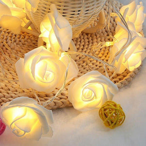 CurioCity Decorative Soft Rose Flower LED String Light of 20 Bulbs, battery operated, Warm White-Decor Lights for Festivals, Home, Garden, Restaurants-LIGHT-STRNG-ROSE-CurioCity-India