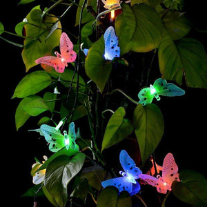 Outdoor Decorative Multi-color 12 LED Butterfly Design String Light for Garden/Lawn, Solar Powered-Decor Lights for Festivals, Home, Garden, Restaurants-LIGHT-SOL-BFLY-CurioCity-India