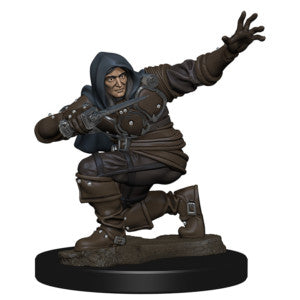Pathfinder Deep Cuts Miniatures: Human Male Rogue [SKU: 72602]