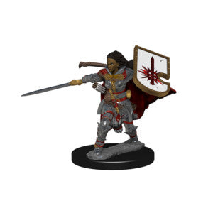 Pathfinder Deep Cuts Miniatures: Human Female Paladin