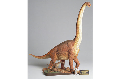Brachiosaurus  Diorama - Tamiya 1/35 model kit