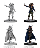Wizkids Pathfinder Deep Cuts Miniatures: Human Female Rogue : 72603