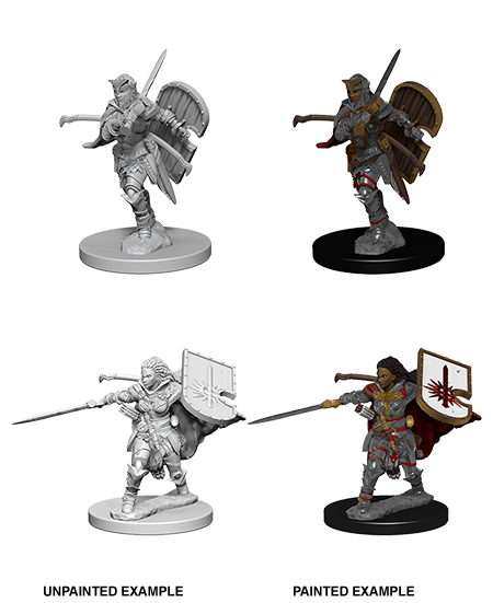Wizkids Pathfinder Deep Cuts Miniatures: Human Female Paladin : 72607
