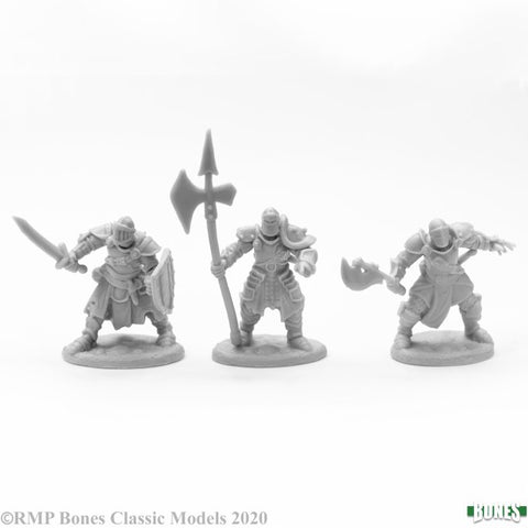 Reaper Miniature 77673- KNIGHTS OF THE REALM