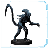 Alien Miniature - Aliens - Another Glorious Day In The Corps Board Game