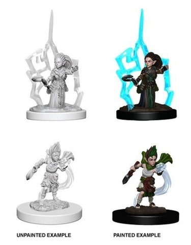 Female Gnome Druid: www.mightylancergames.co.uk