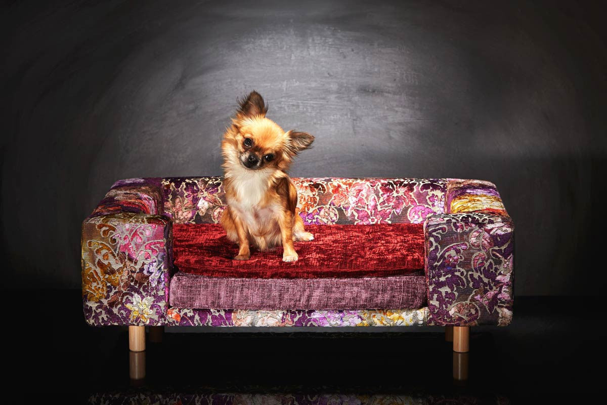 Designer Dog beds Le Couture Antique Rose S Sabanah chihuahua sofa