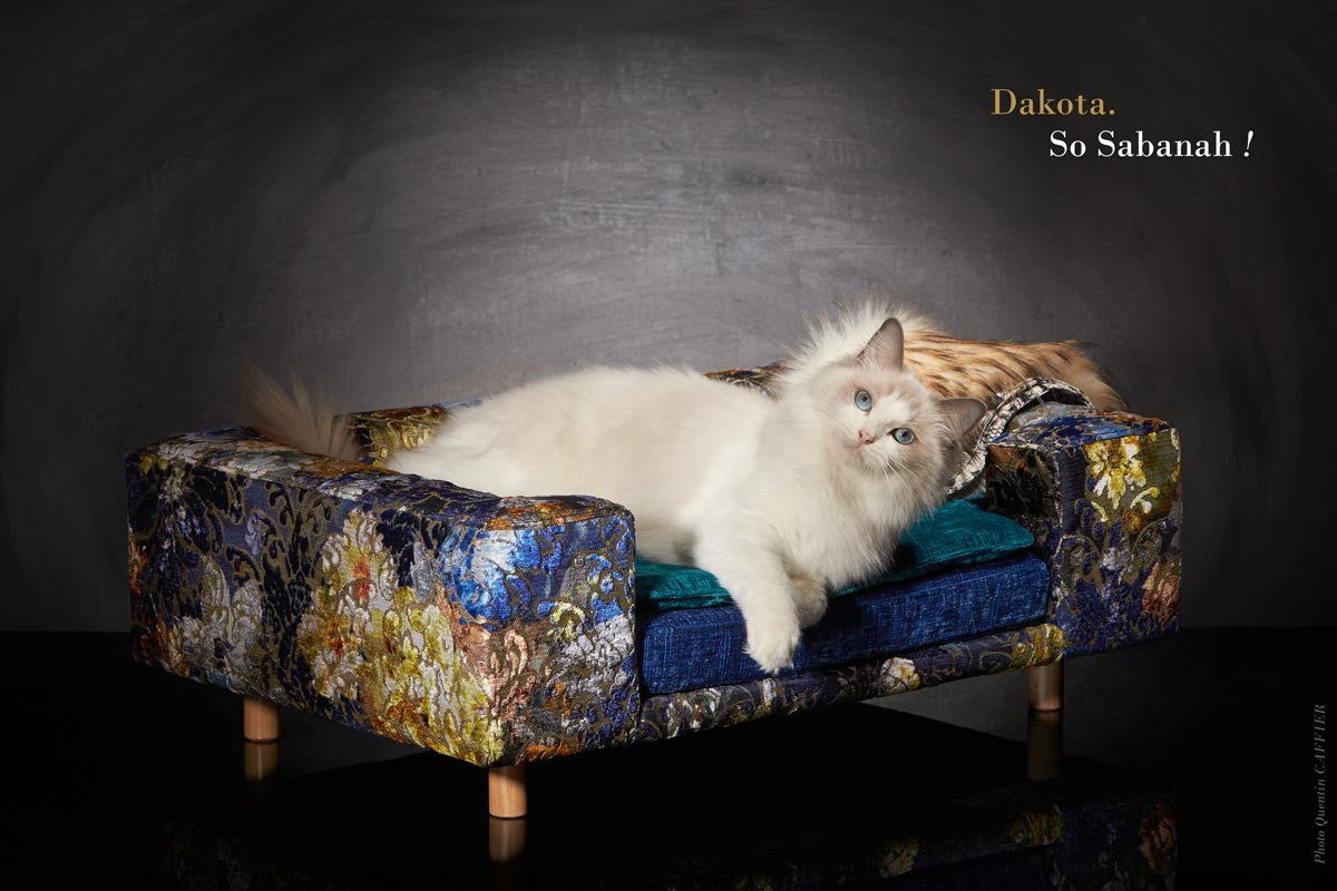 ... Luxury Sofa For Cat Le Couture Sabanah S Size ...