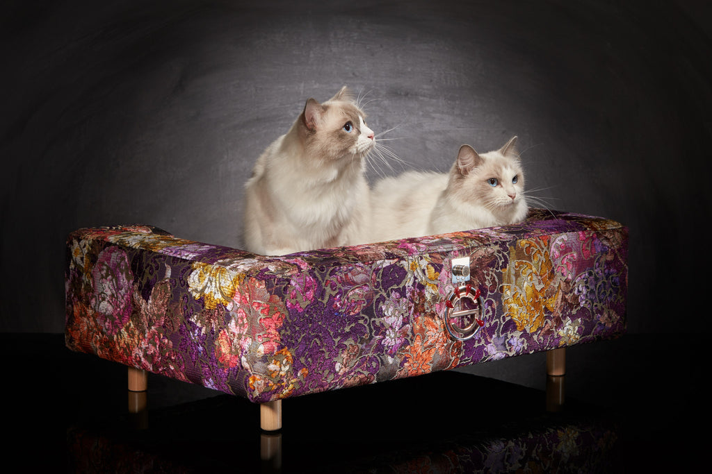 Wondrous Sofa For Cat Le Couture Palace Rose Or Blue Andrewgaddart Wooden Chair Designs For Living Room Andrewgaddartcom