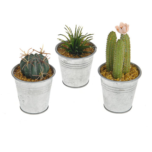 Artificial Plant - Potted mini Cactus
