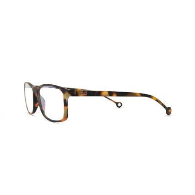 Parafina Reading Glasses - EBRO Tortoise