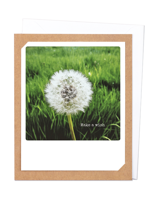 Pickmotion Photo-Card - Make a Wish Dandelion