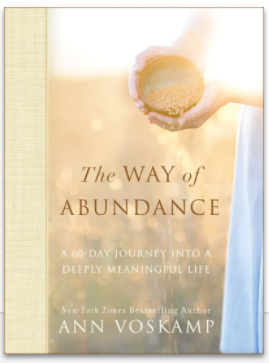 THE WAY OF ABUNDANCE by Ann Voskamp