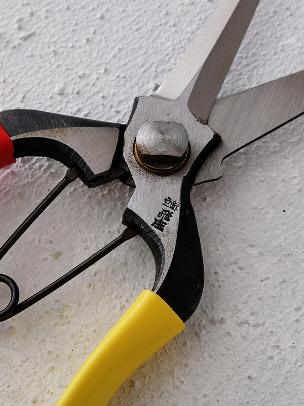 Snipping Pruner (200mm) - WAZA
