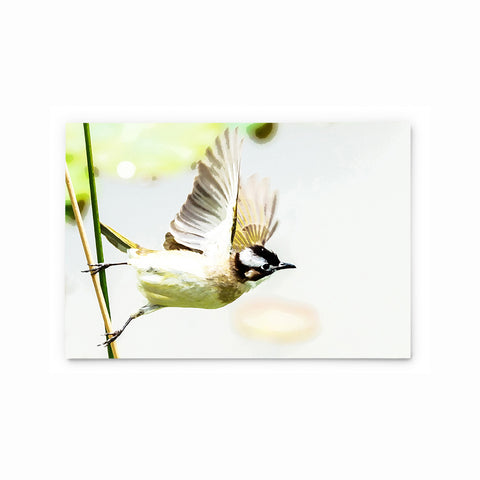 Chinese Bulbul | Hong Kong Birds Note Cards by Blank Sheet