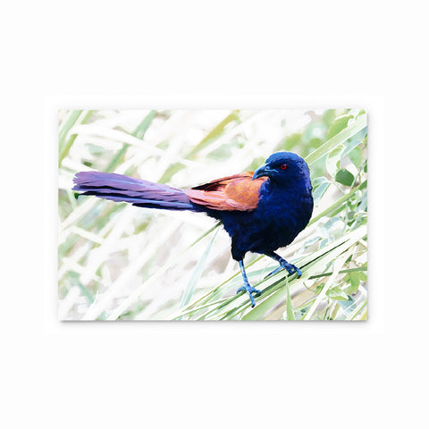 Greater Coucal | Hong Kong Birds Note Cards by Blank Sheet