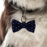Spotted  | Personalized Pet ID Tags for Dogs & Cats by Blank Sheet